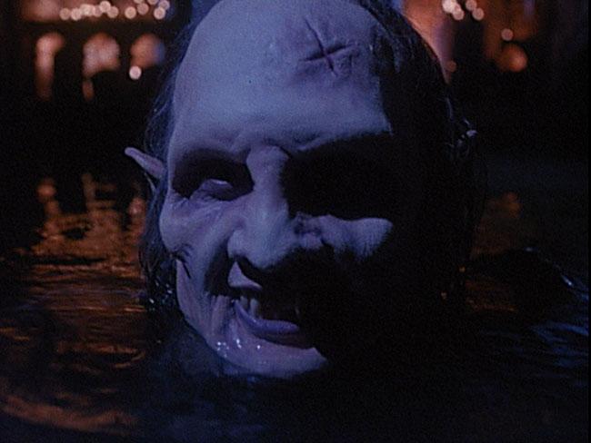 Children of the 1991 is a 1991 vampire movie filmed in Wisconsin